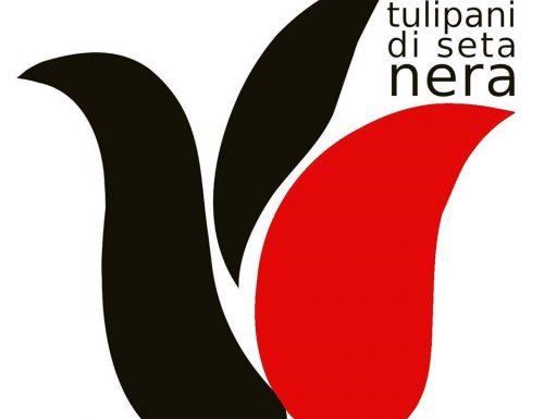 Premio #SocialClip La sezione del festival TULIPANI DI SETA NERA dedicata ai migliori videoclip musicali sulla diversità ha decretato i vincitori